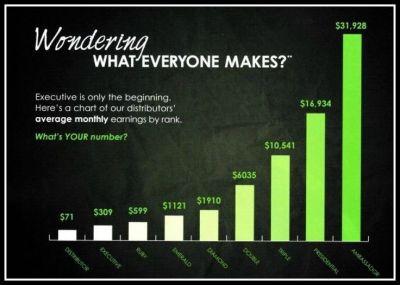 income chart2